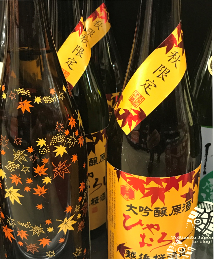 automne japon kyoto
